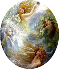 articolo - angeli delle stagioni - animaceleste.it