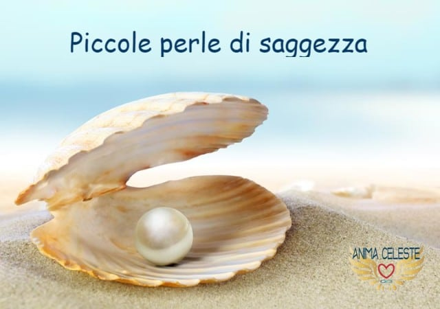 perle di saggezza - animaceleste.it